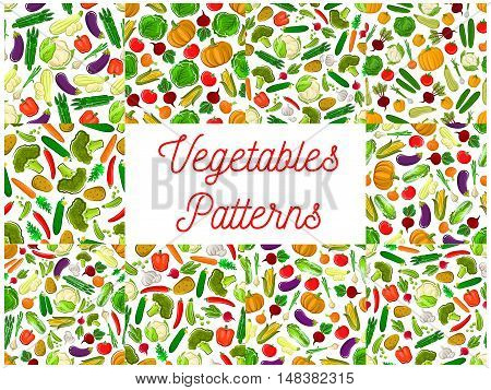 Vegetables seamless backgrounds set. Vector pattern of farm cucumber, carrot, potato, beet, kohlrabi, radish, cabbage, asparagus, squash, eggplant, garlic pepper paprika pumpkin broccoli tomato cauliflower corn pea