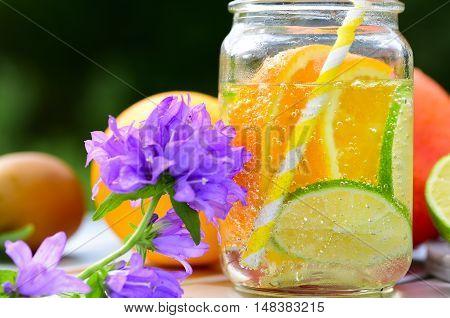 Healthy Spa Water with Fruit. Fruit lemonade