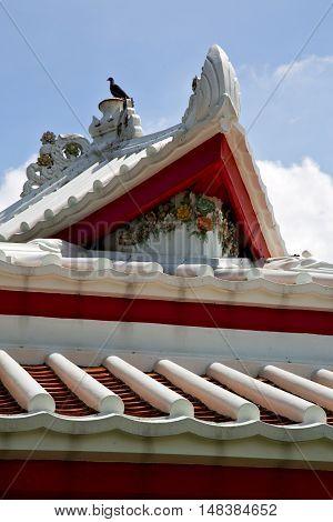 Asia  Thailand    Bangkok Sunny  Temple Abstract Bird