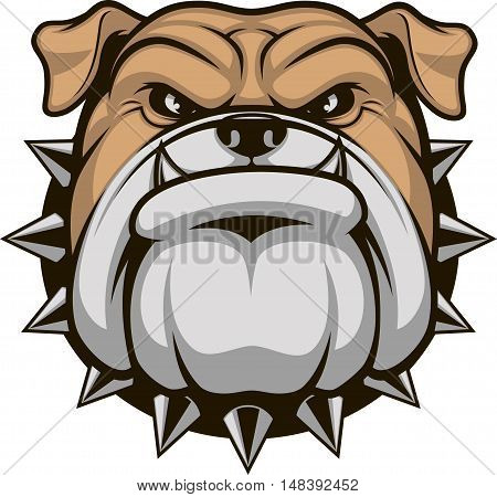 Vector illustration head ferocious bulldog mascot on a white background