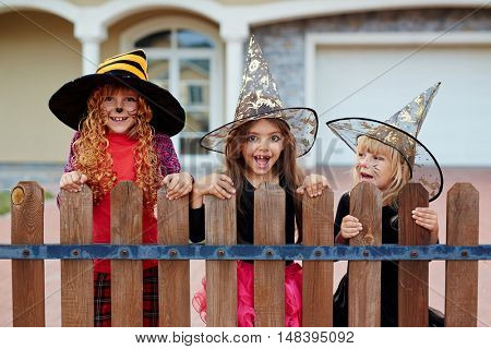 Witches by fence