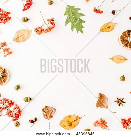 autumn fall flat lay top view creative frame arrangement.