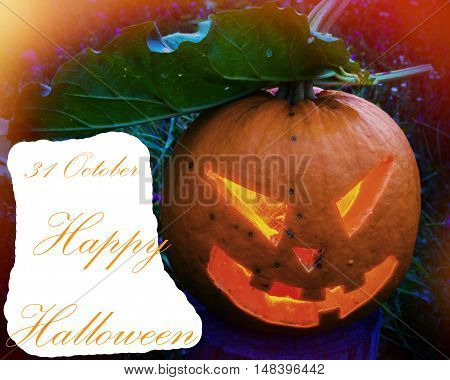 Scary pumpkin covered with foliage on Halloween on a background of grass and the text