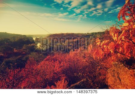 Rural autumn beautiful landscape with river and colorful trees, seasonal vintage background