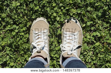 Feet in sneakers on green grass standing