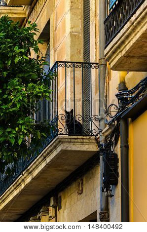 Balcony of sandstone building with black cat on it, Tarragona summer Spain