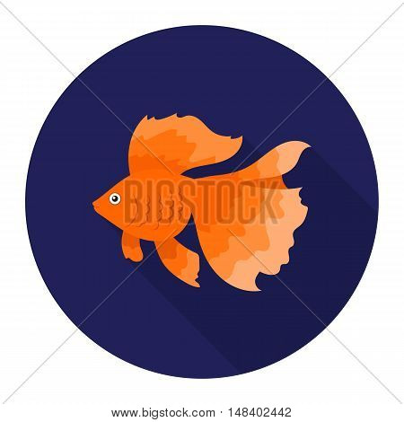 Gold fish icon flat. Singe aquarium fish icon from the sea, ocean life flat.