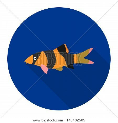 Botia clown Botia macracantha fish icon flat. Singe aquarium fish icon from the sea, ocean life flat.