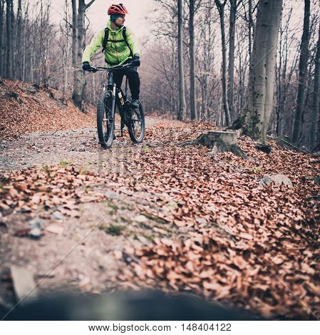 Mountain biker cycling on trail in woods. Forest and mountains in winter or autumn landscape. Man cycling MTB on rural country road. Sport fitness motivation and inspiration.