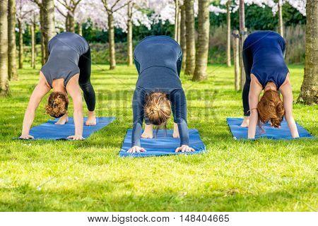 Three girls standing in a basic yoga pose - downward facing dog