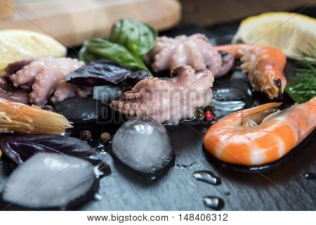 Gourmet Pink Shrimp And Octopuses With Ice, Herbs And Spices