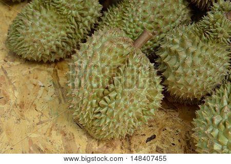heap of Mon Thong durian fruits, king of fruit