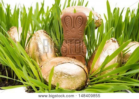 Chocolate bunny in the grass with wrapped easter eggs