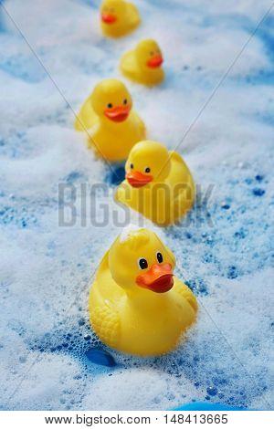 Row of Rubber Ducks in Bubble Bath