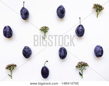 Colorful pattern of fresh purple plums and flowers. Flat lay top view