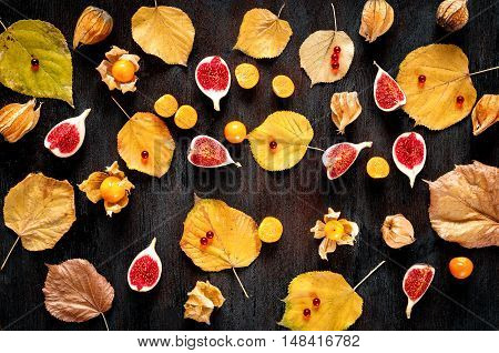 Autumn background: colorful fallen maple leaves, red berries on wooden surface - pattern for post cards, design templates, mock ups