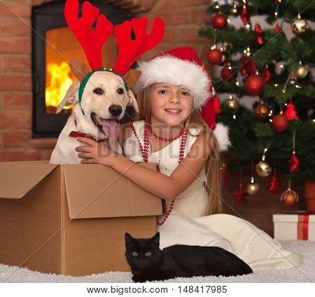 Celebrating christmas with my furry friends - little girl with her kitten and young labrador dog