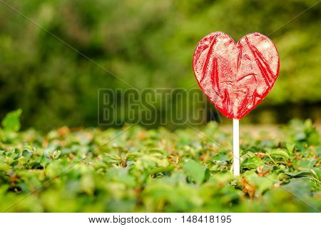 sweet red caramel candy in the form of heart on a background of green nature, Valentine's Day, love,