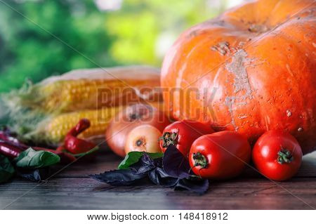 Fresh vegetables on a dark table. Autumn background. Healthy eating. Pumpkin, bell peppers, paprika, tomatoes, basil corn cob