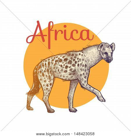 African animals. Hyena. Illustration Vector Art. Style Vintage engraving. Hand drawing.