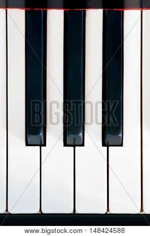 Piano keys close up. Three black and four white