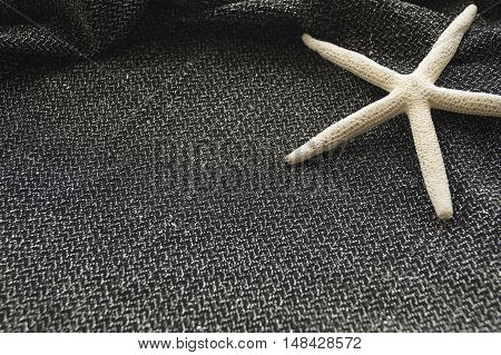Sea Stars On Silvery Black Tissue Close-up In The Upper Right Corner