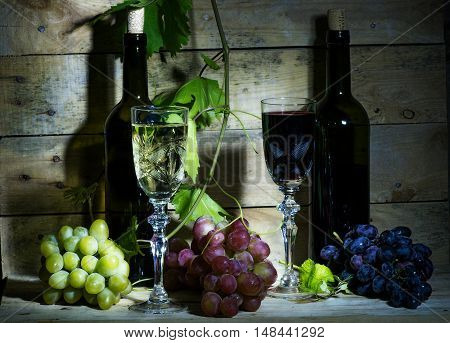 Still life with wine vine and bunch of grapes