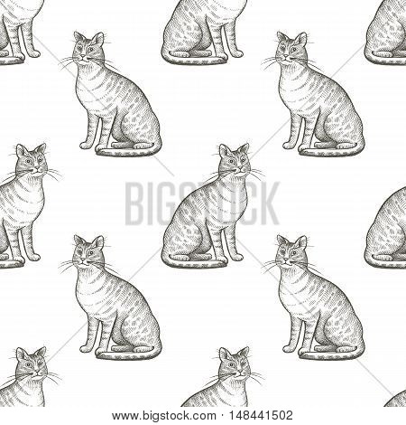 Cats. Seamless vector pattern. Black and white illustration.