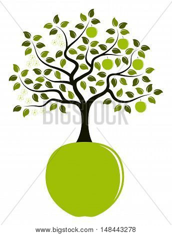 vector apple tree in two seasons growing from apple isolated on white background