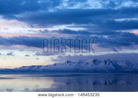 Lake Manasarovar In Western Tibet, China