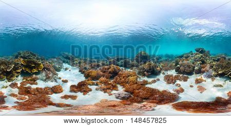 Spherical, 360 degrees, seamless panorama of the tropical coral reef in the sea of Bali, Indonesia