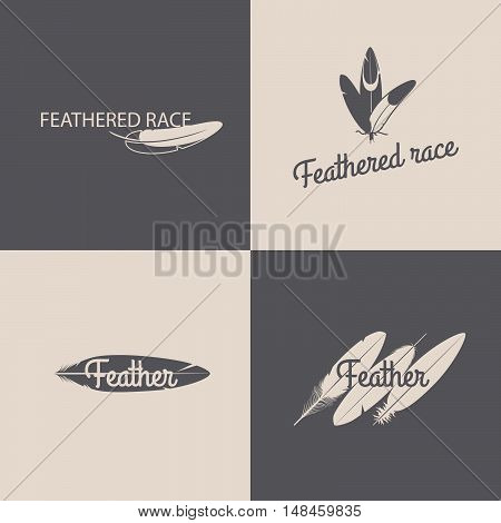 Feather logotype grey design templates. Vector illustration