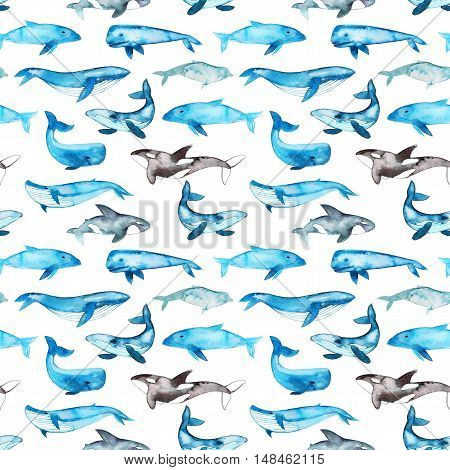 Seamless pattern with hand drawn blue whales. Ink illustration. Hand drawn animals pattern for wrapping paper. Abstract watercolor ornament. Watercolor texture.