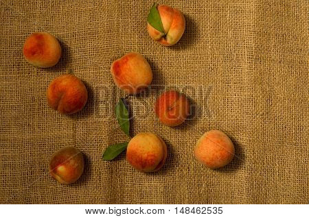 Ripe peaches with leaves on sackcloth top view