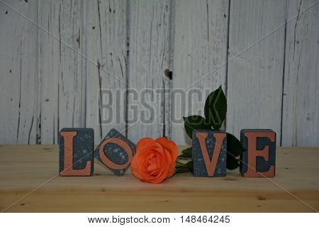 Blocks with the word love and rose against wooden wall