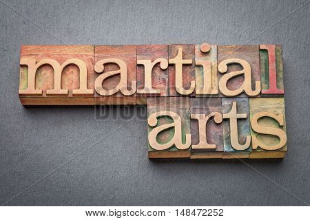 martial arts word abstract in letterpress wood type blocks against gray slate stone