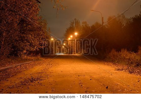 Street in the village Ust-Slavianka at night on the outskirts of St. Petersburg Russia.