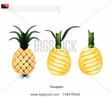 Papua New Guinea Fruit Illustration of Pineapple. One of The Most Popular Fruits in Papua New Guinea.