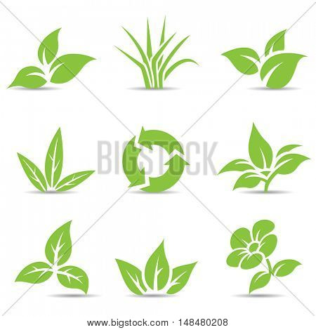 Illustration of Green Leaves isolated on white