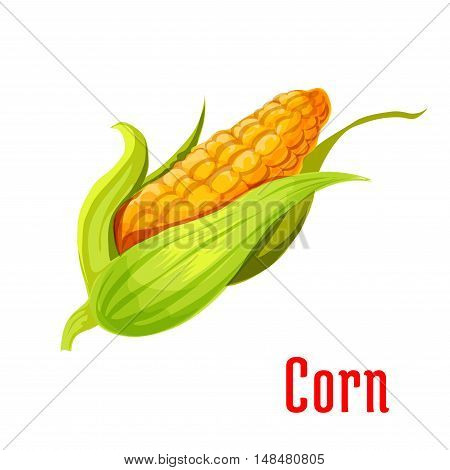 Corn ear plant icon. Isolated leafy vegetable green element. Vegetarian maize product sign for sticker, grocery shop, farm store