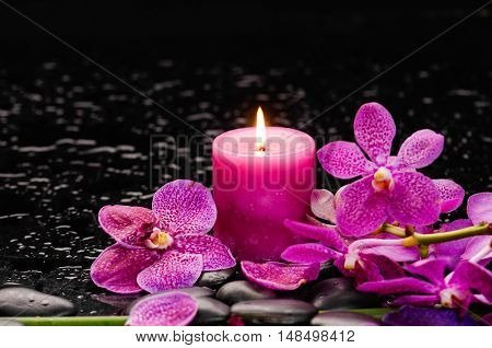 Branch orchid and candle on black stones with long stem