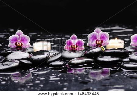 Pink orchid and white candle on black stones