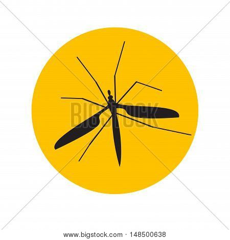 Vector sign mosquito in the amber isolated illustration