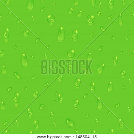 Green natural seamless background with water drops. Freshness clear droplet, vector illustration