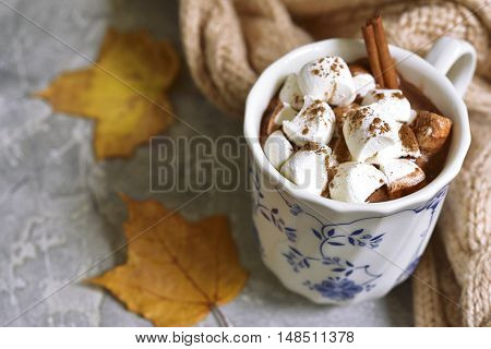 Cup Of Hot Chocolate With Mini Marshmellows Cinnamon.