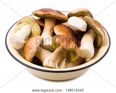 The cepes isolated in a plate one a