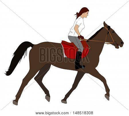 woman riding horse illustration - vector