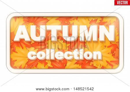 Label of Autumn Collection inscription with leaves. Fall sale design. Can be used for flyers, banners or posters. Vector illustration isolated on white background.