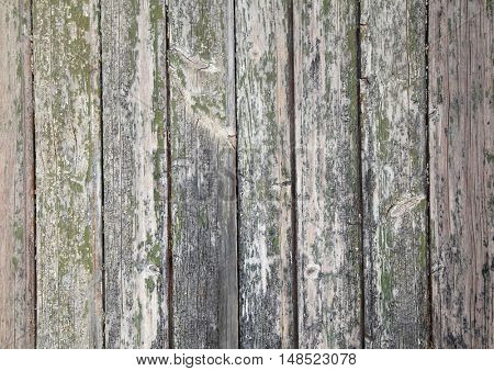 colored wood planks