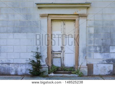 Entrance to a house with non fitting newer door which are not original. Grey wall. Conifer growing beside the door. Probably Christmas memory.